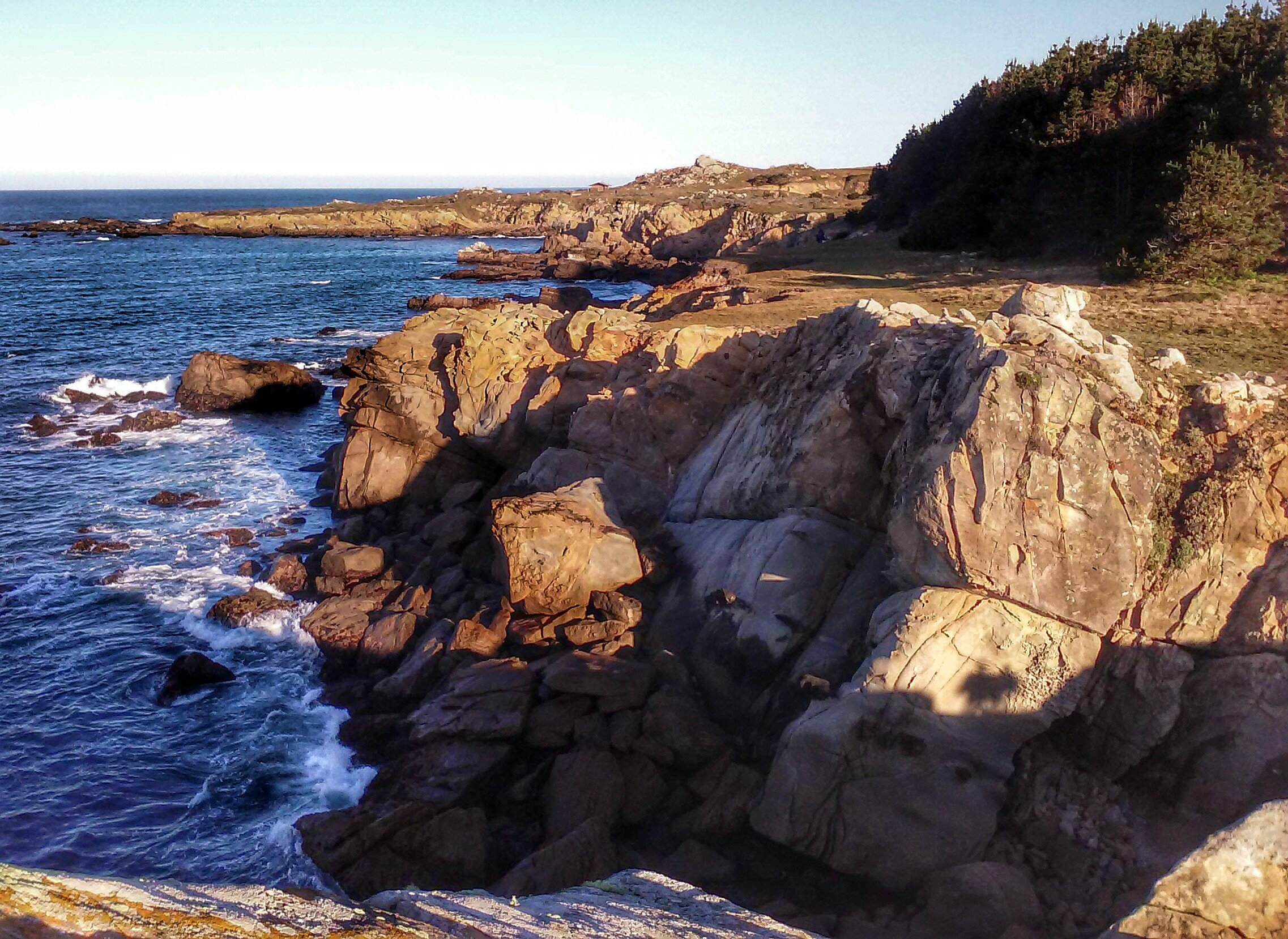 Salt Point Coast