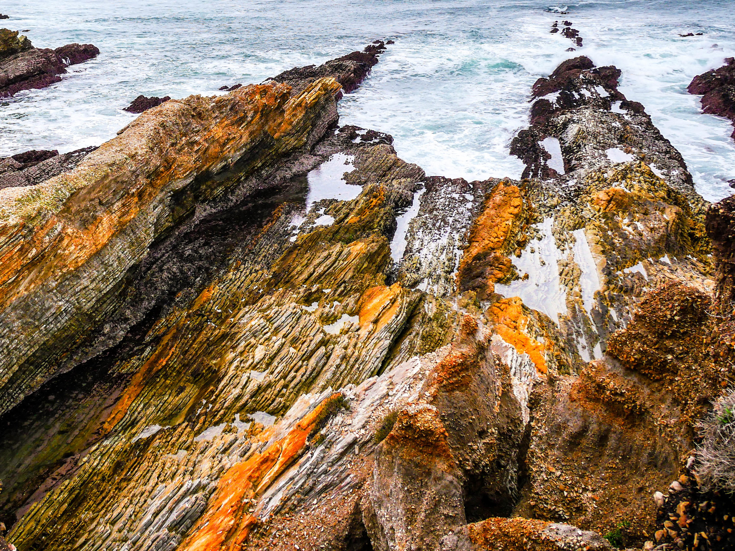 The coastline on the Bluffs Trail at Montana de Oro State Park.