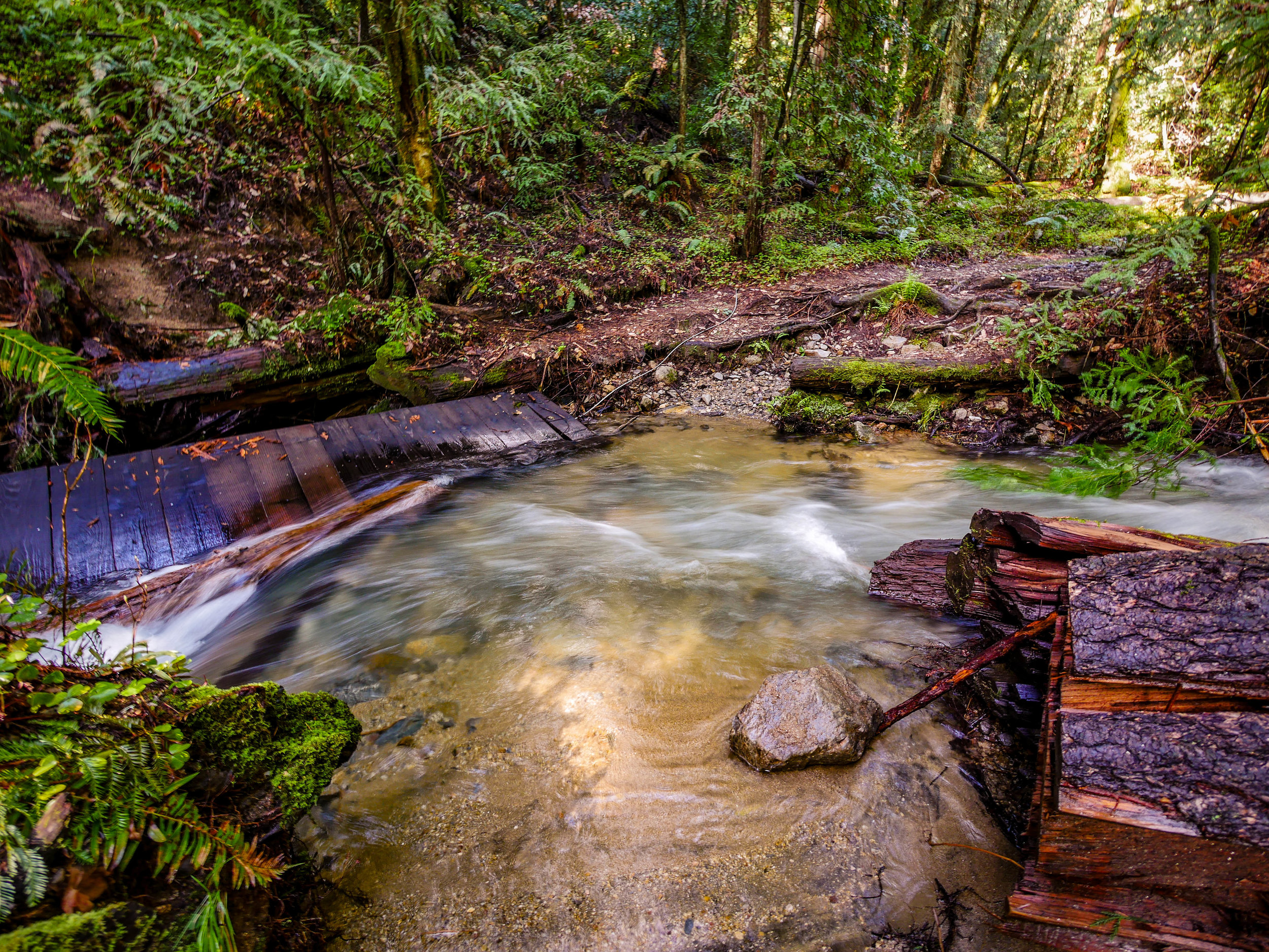 A washed out bridge and fast moving stream blocked the trail.