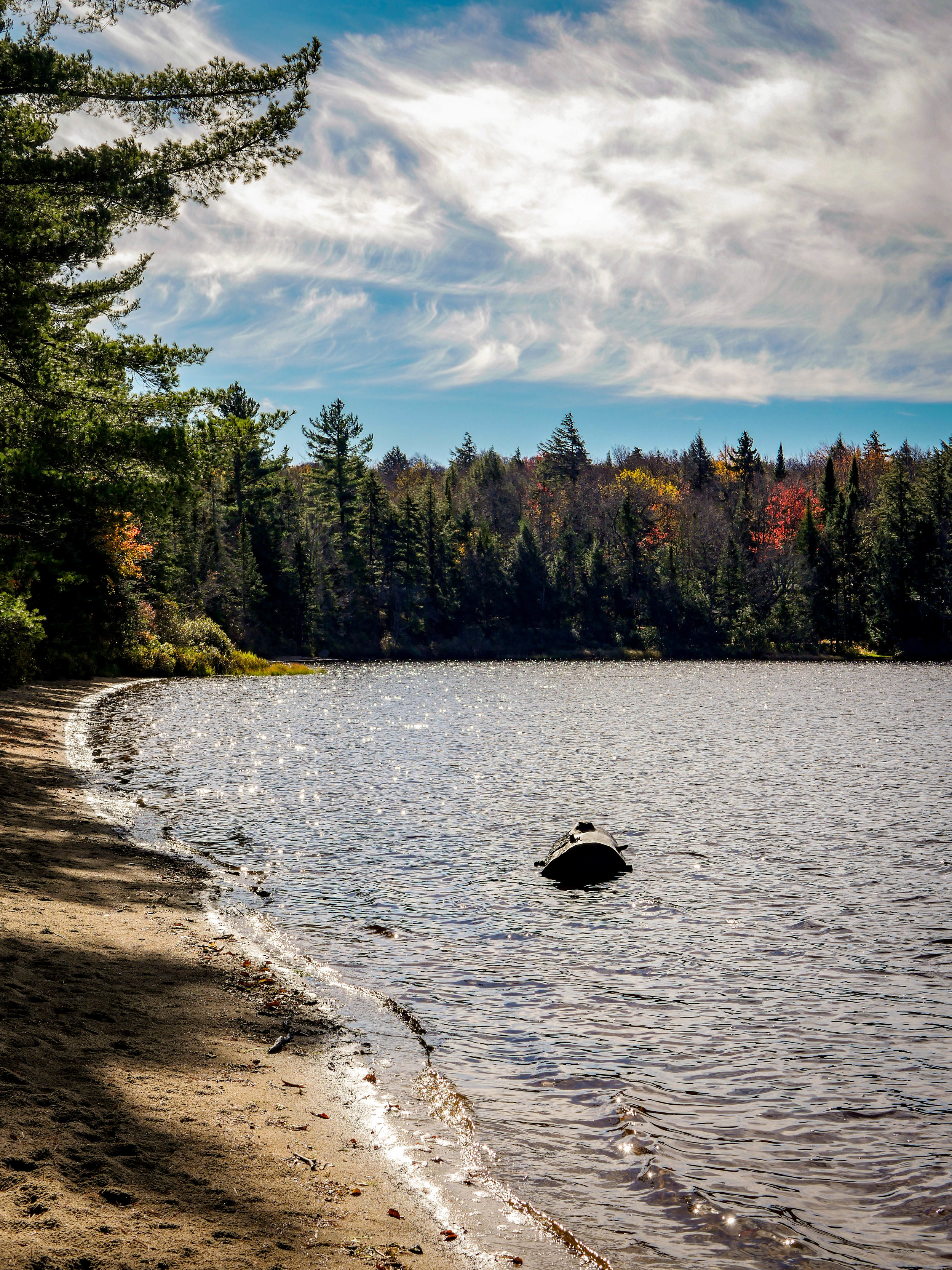 Colorful fall forest and Browns Tract Pond in the Pigeon Lake Wilderness.