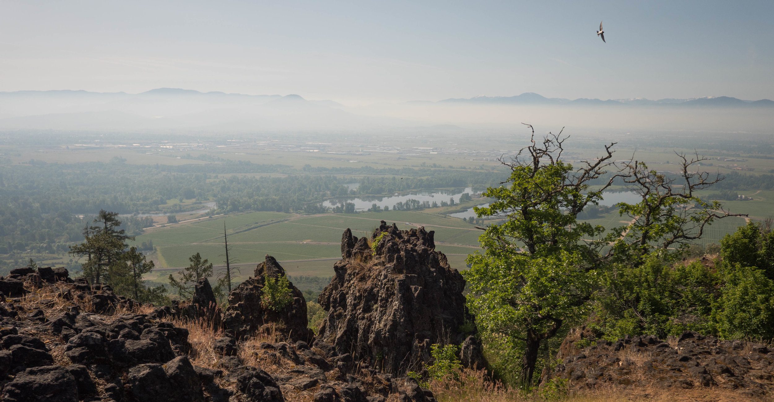 The view to the south. The Siskiyou range and more of the Rogue Valley.