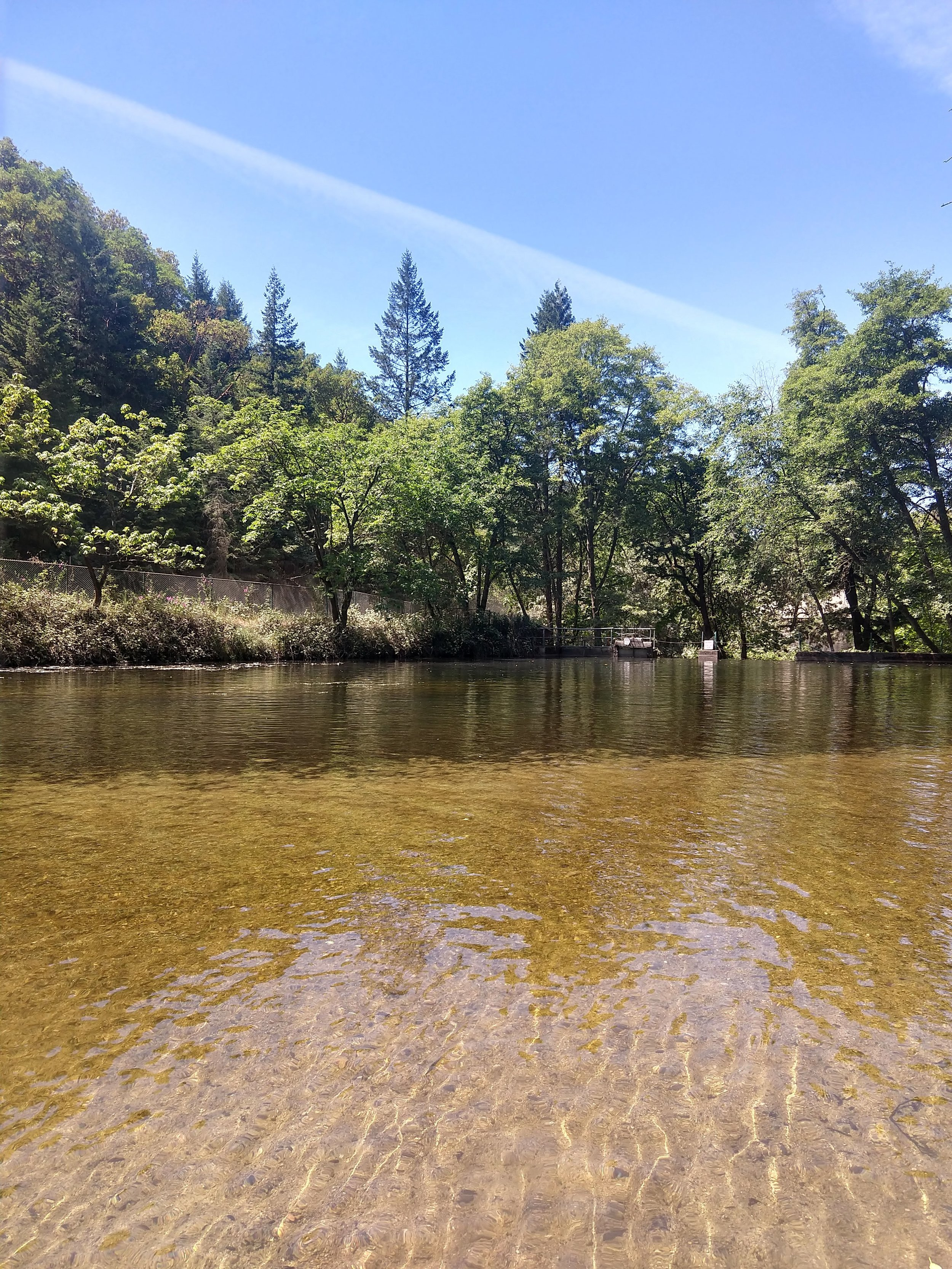 Granite Street Creek Reservoir above Lithia Park in Ashland, Oregon.