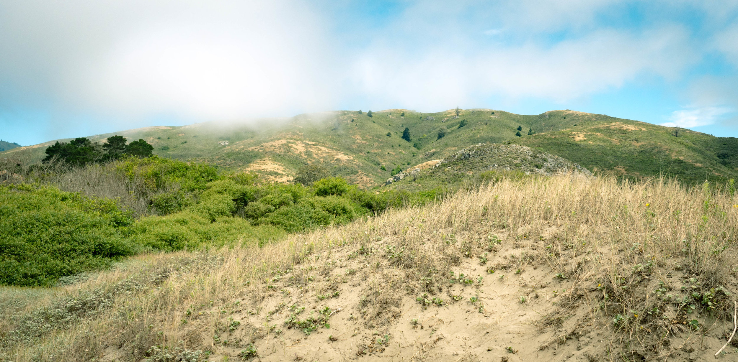 The hills above Muir Beach.