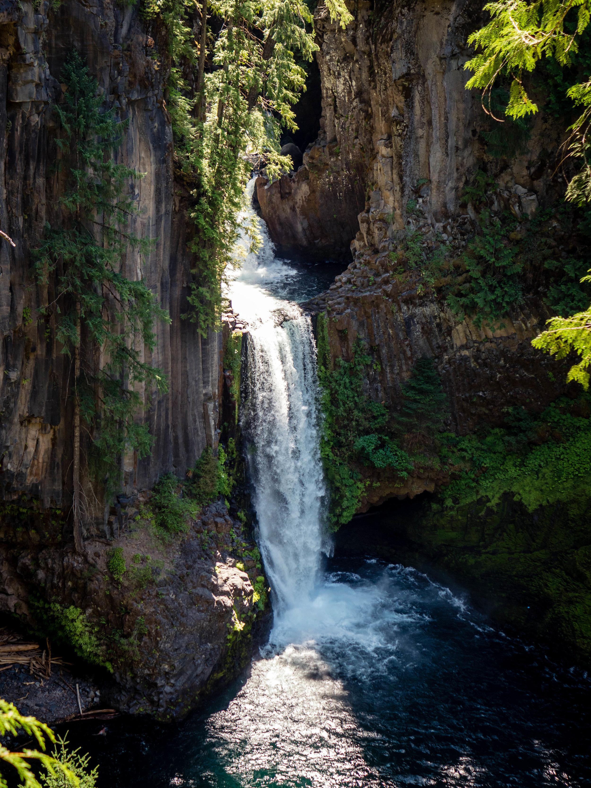 Iconic Toketee Falls in the Umpqua Basin.