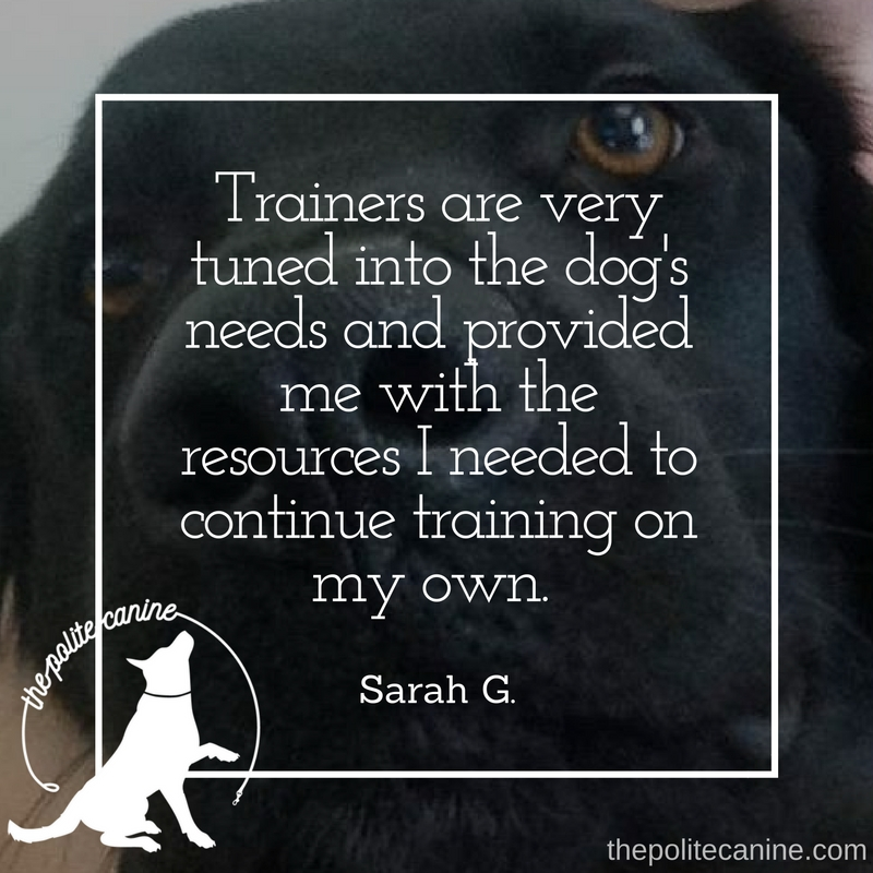 Trainers are very tuned into the dog's needs and provided me with the resources I needed to continue training on my own. (1).jpg