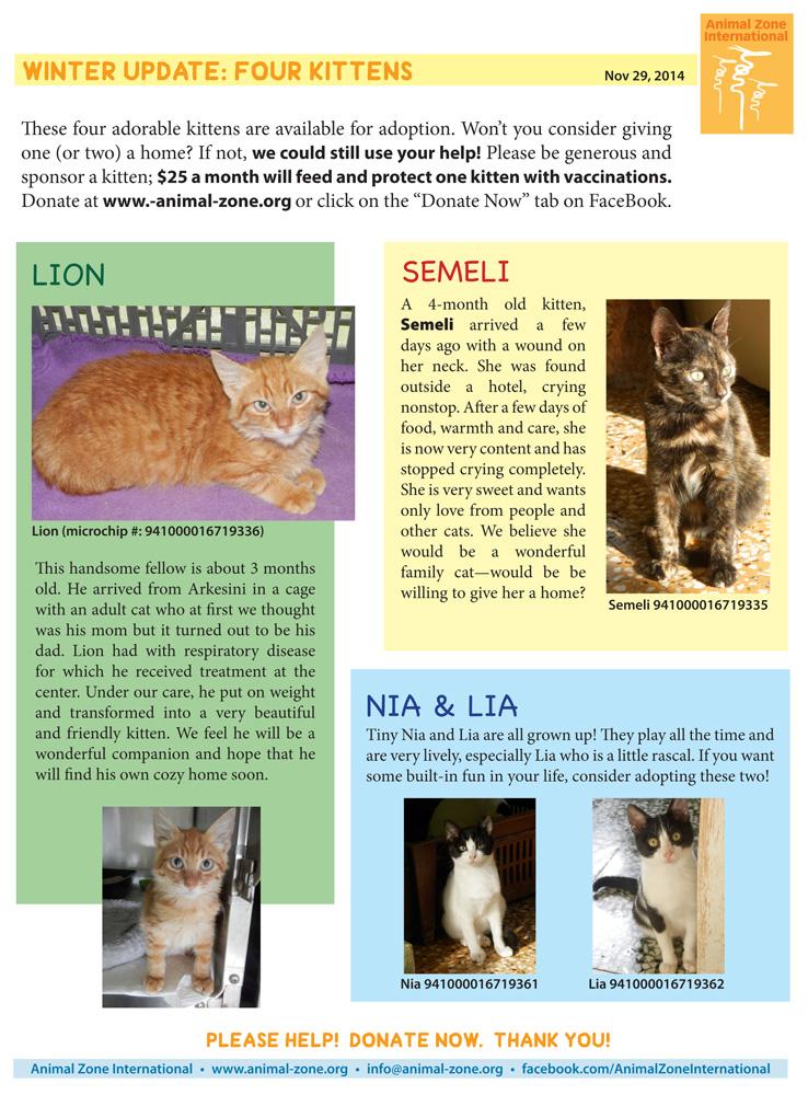 kittens112914.jpg