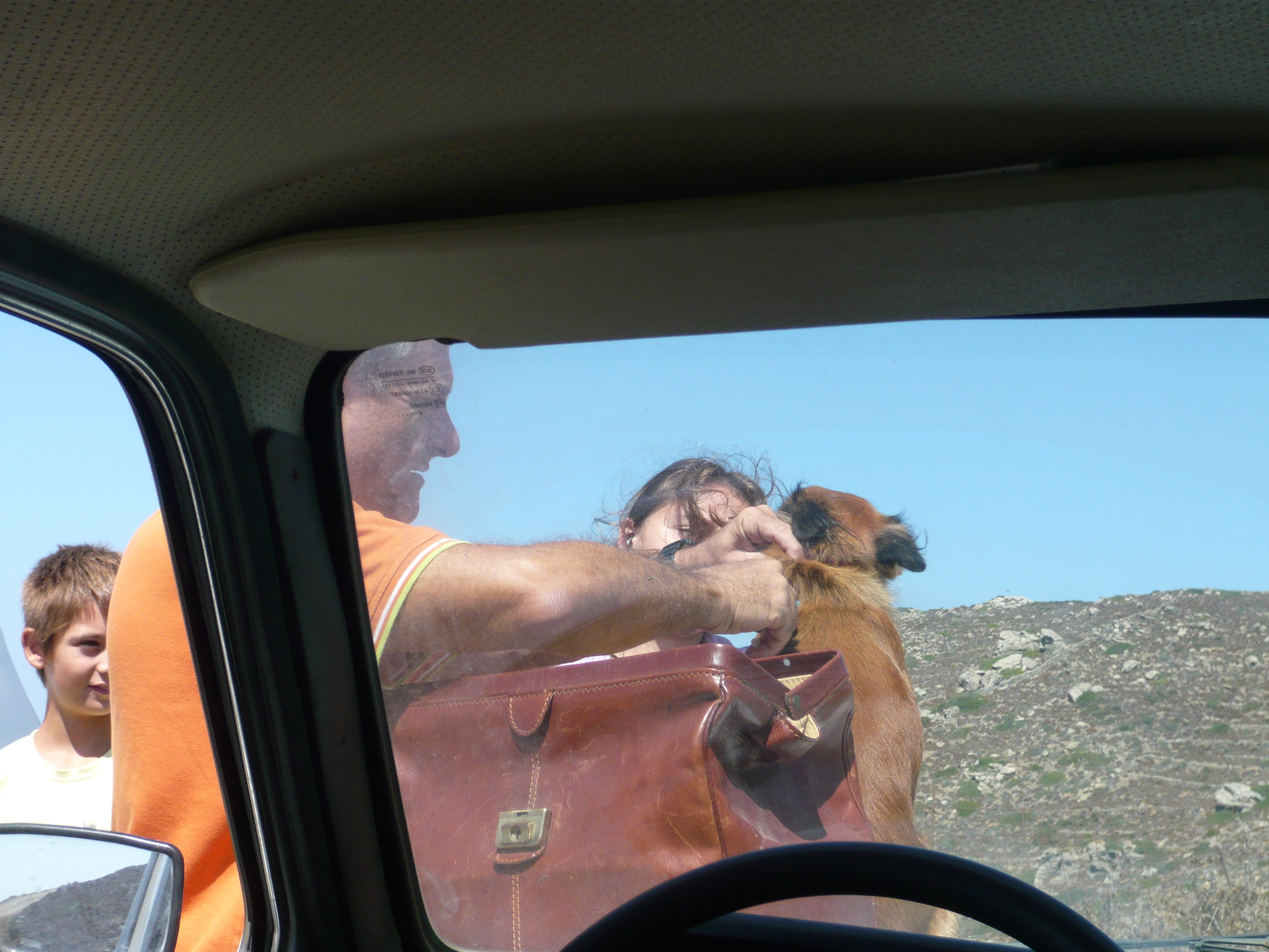 On the road, treating a dog with a broken leg