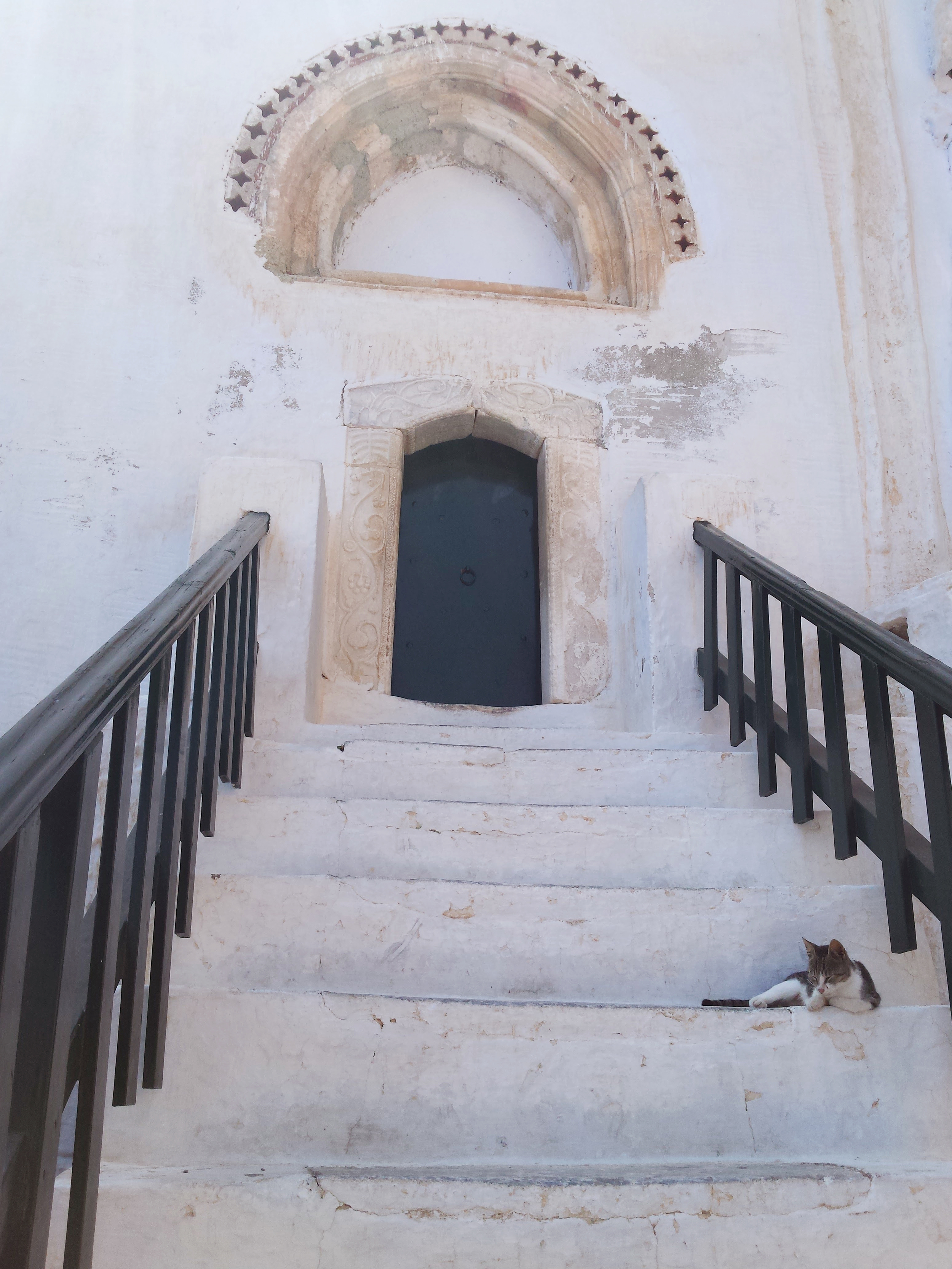 Cat in on Stairs Amorgos