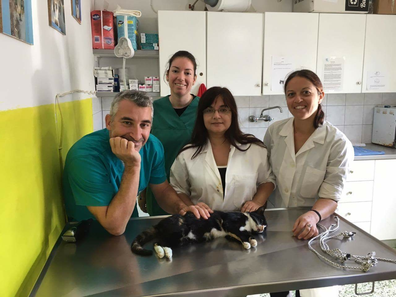 Dr. Manolis Vorisis, Dr. Andrianna Papadimitropoulou, our volunteer, Hariklia Psaki, who helped in the surgeries and in the preparation for the neutering and Litsa Passari, our coordinator