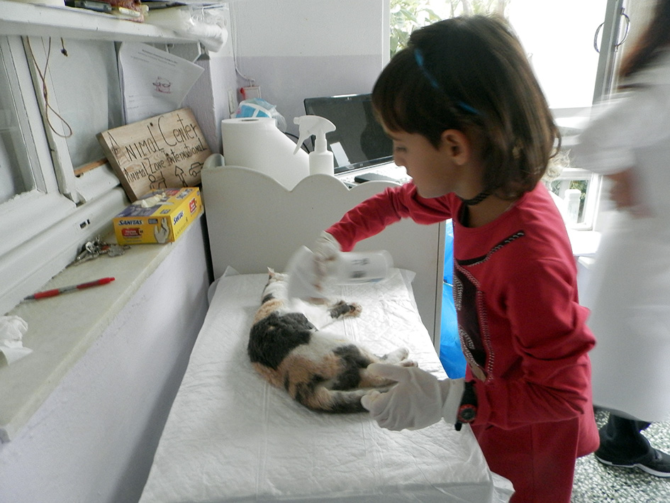 Little Melina was a great partner in helping to care for the cats after their surgeries.