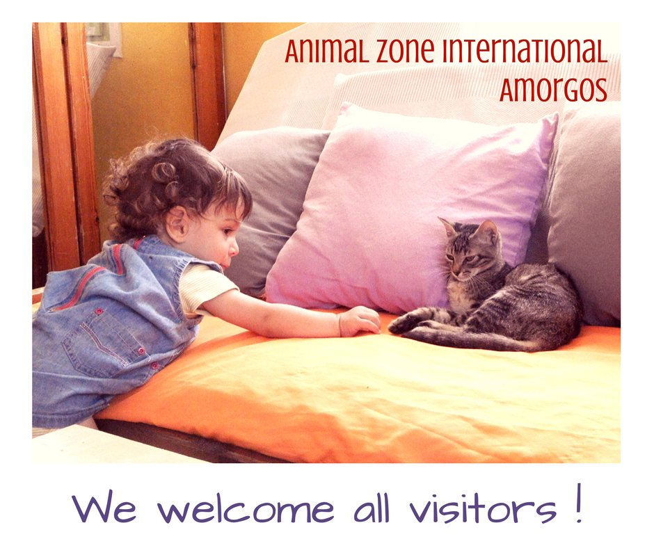 visit-our-center.jpg