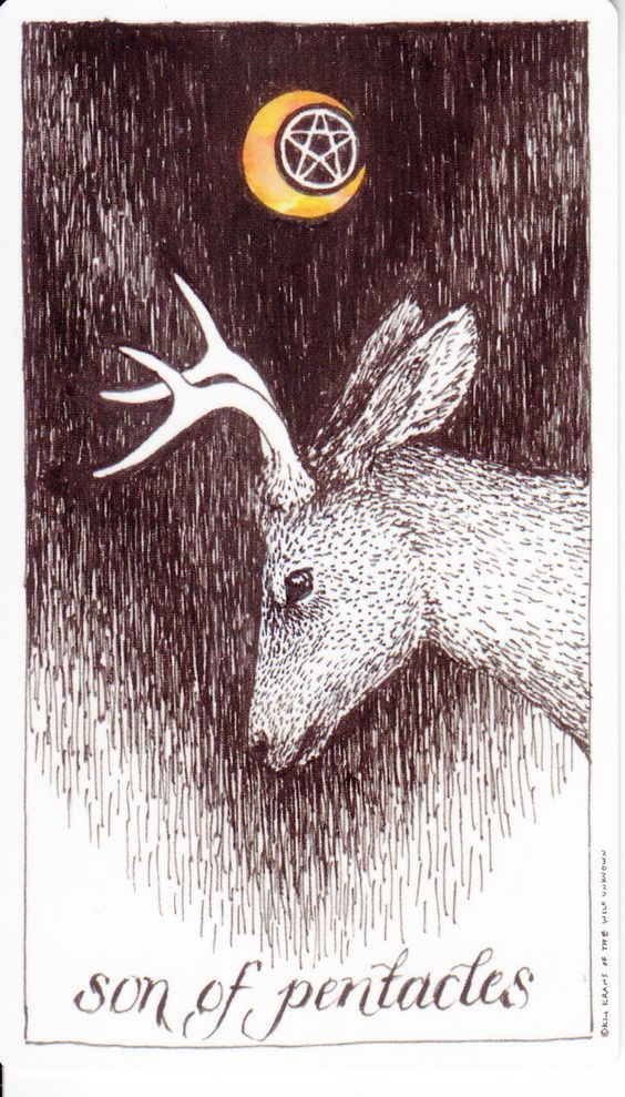 Tarot card by The Wild Unknown