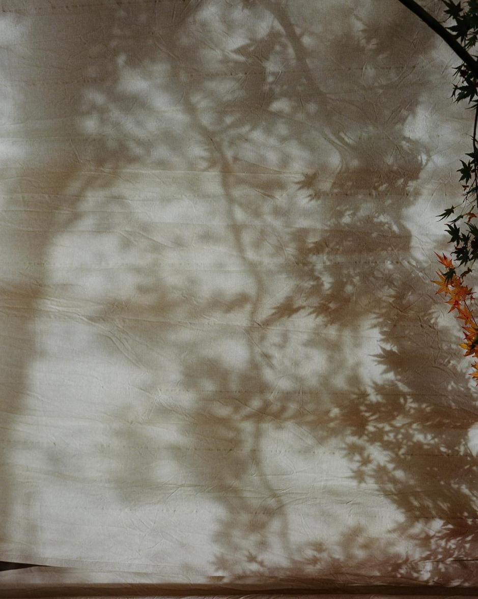 paris shadows, from stella's instagram