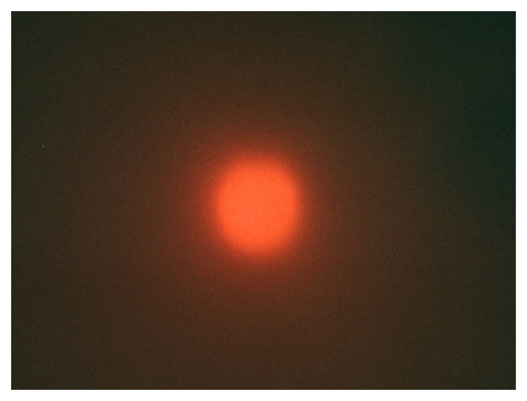 Eclipsed sun by Alyson Fox