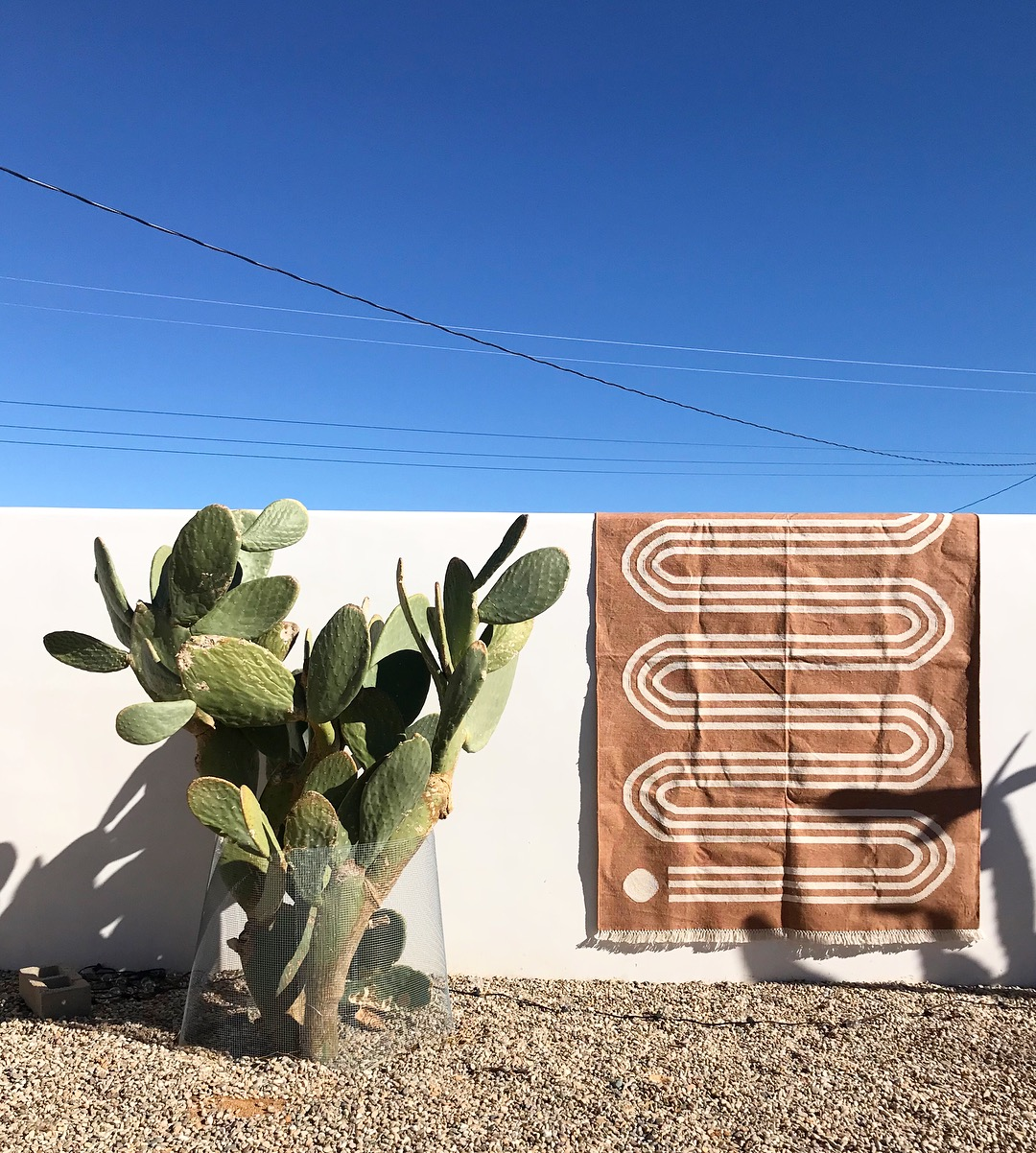 Hardware cloth to keep the antelope squirrels out of my prickly pear. A rug my sister Hopie and I designed this winter for  Block Shop .