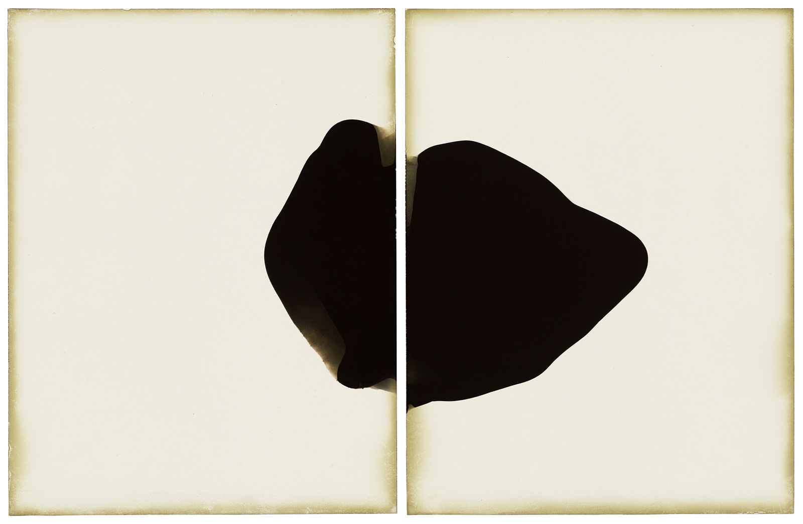 Alison Rossiter,  Haloid Platina, exact expiration date unknown, about 1915, processed 2010