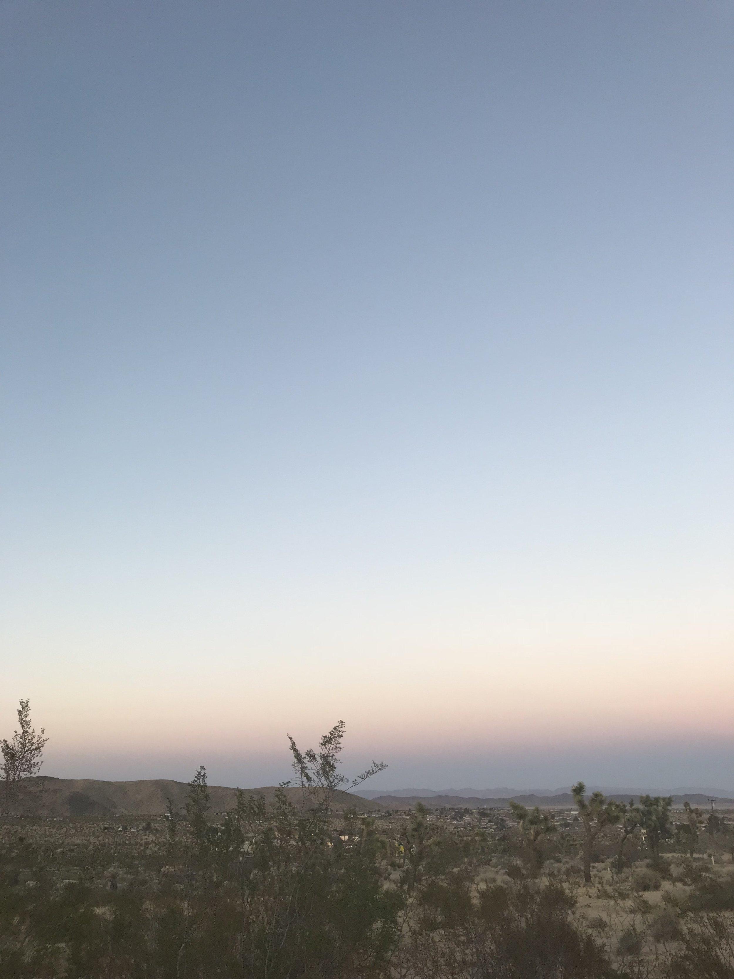 Joshua Tree sky