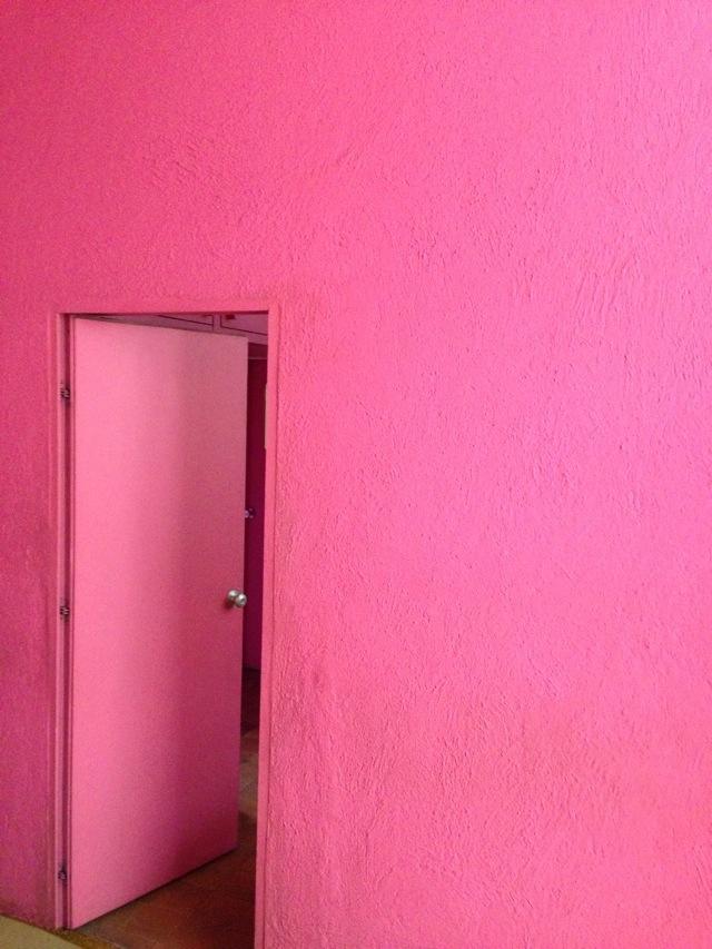 Barragan's pink