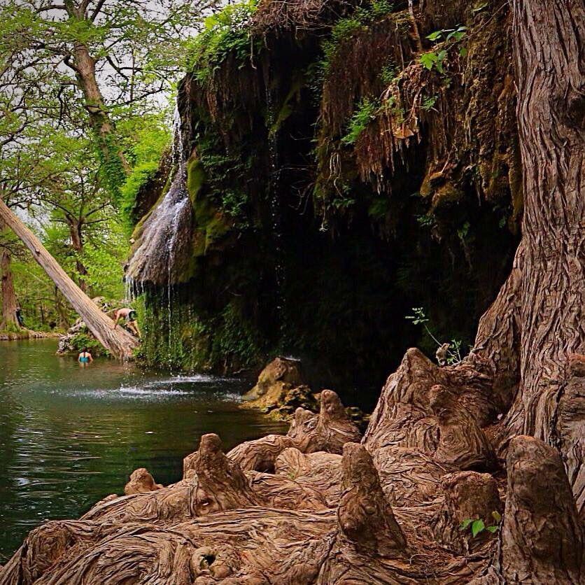 Krause Springs, outside of Austin TX