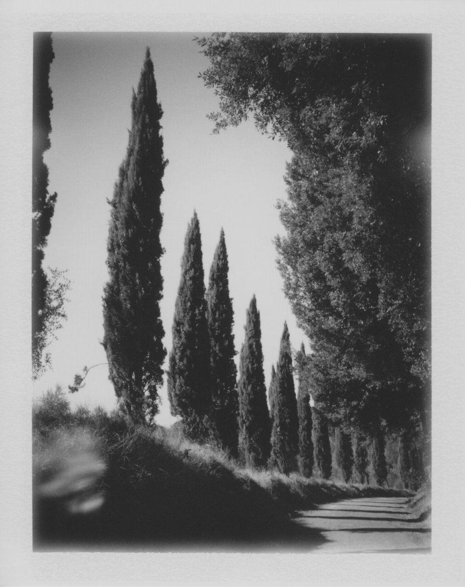 Villa Lena polaroid by fellow residency artist Cyrus Mahboubian