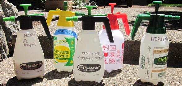 An assortment of pump sprayers