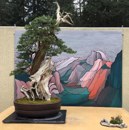 Sierra Juniper and Yosemite Valley, museum collection