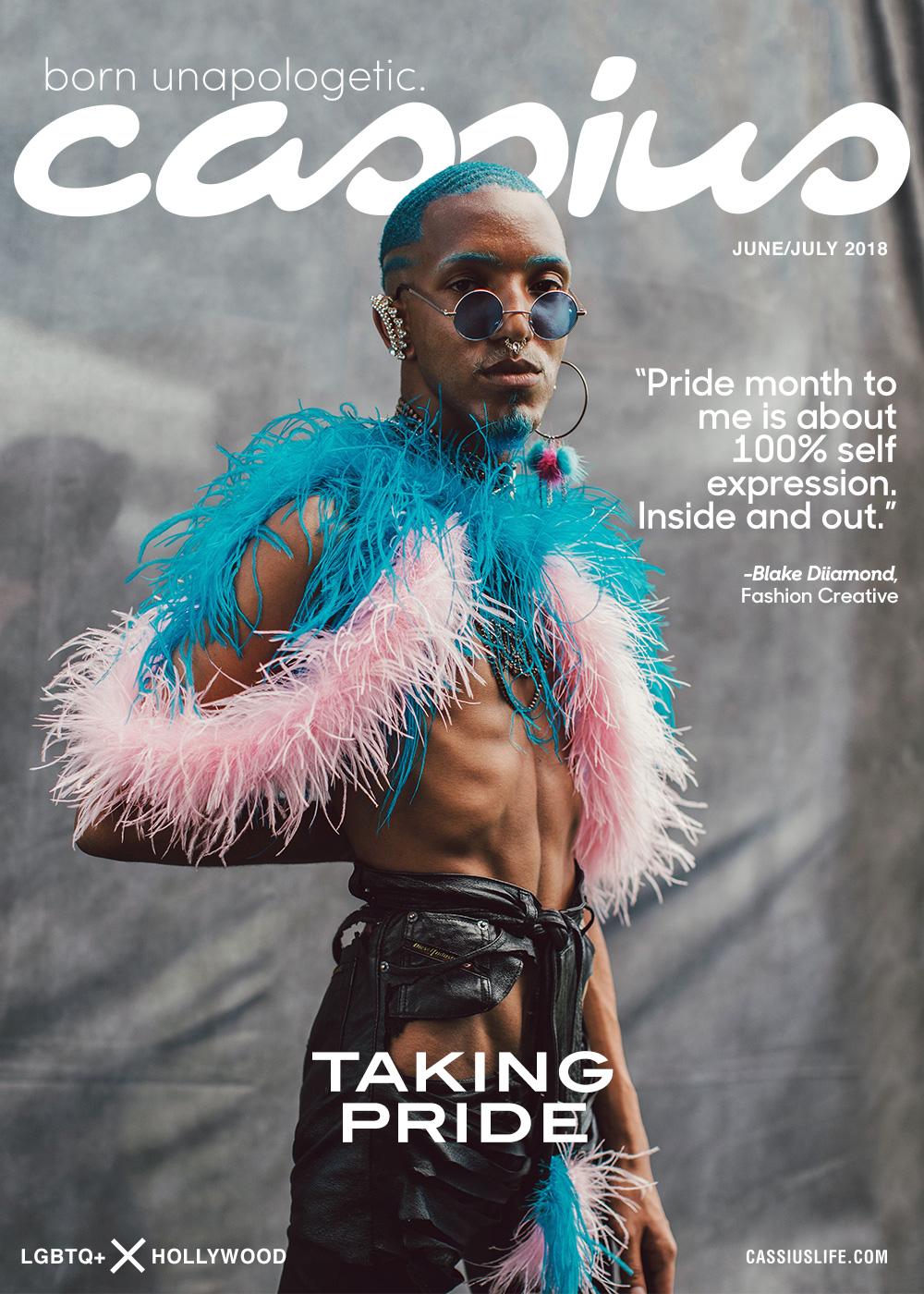 Cassius Magazine - Afropunk 2017 -