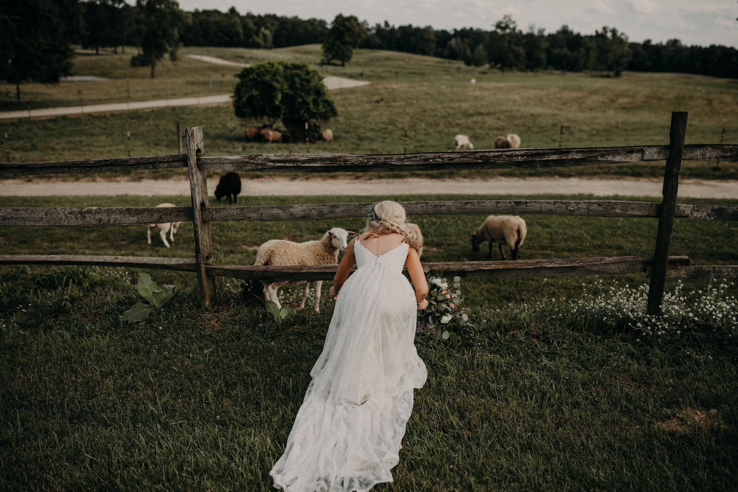 (309) Mary + Eric (Wedding).jpg