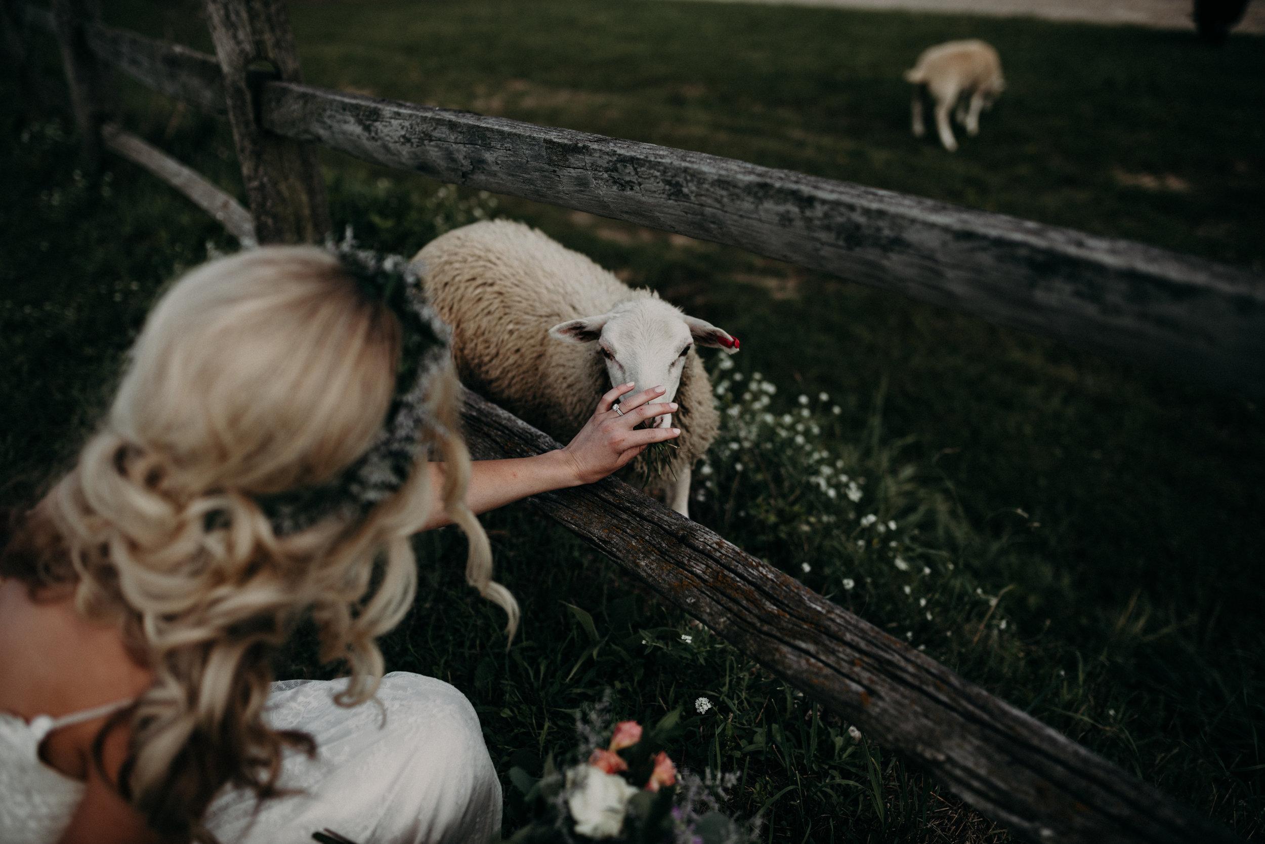 (313) Mary + Eric (Wedding).jpg