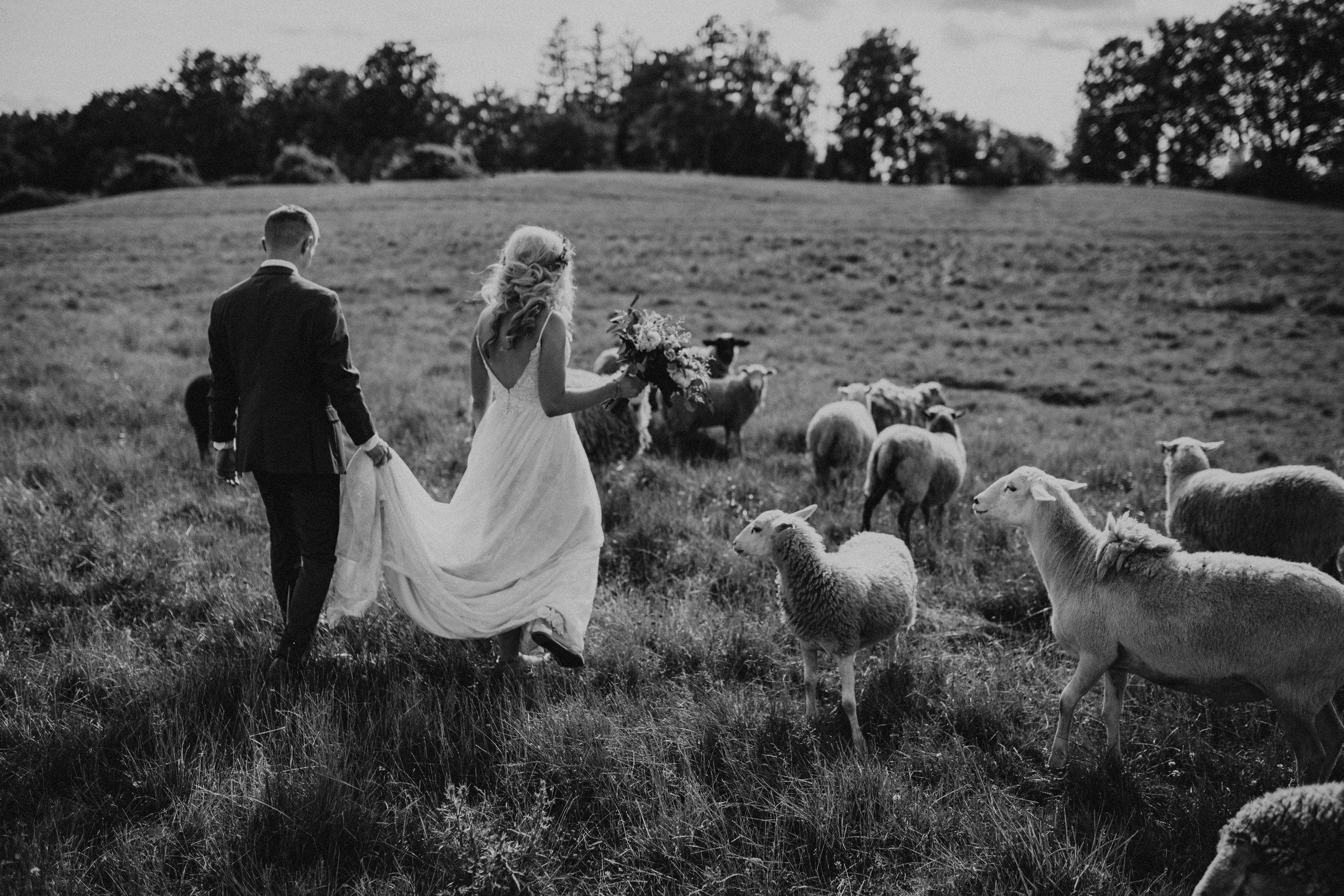 (368) Mary + Eric (Wedding).jpg