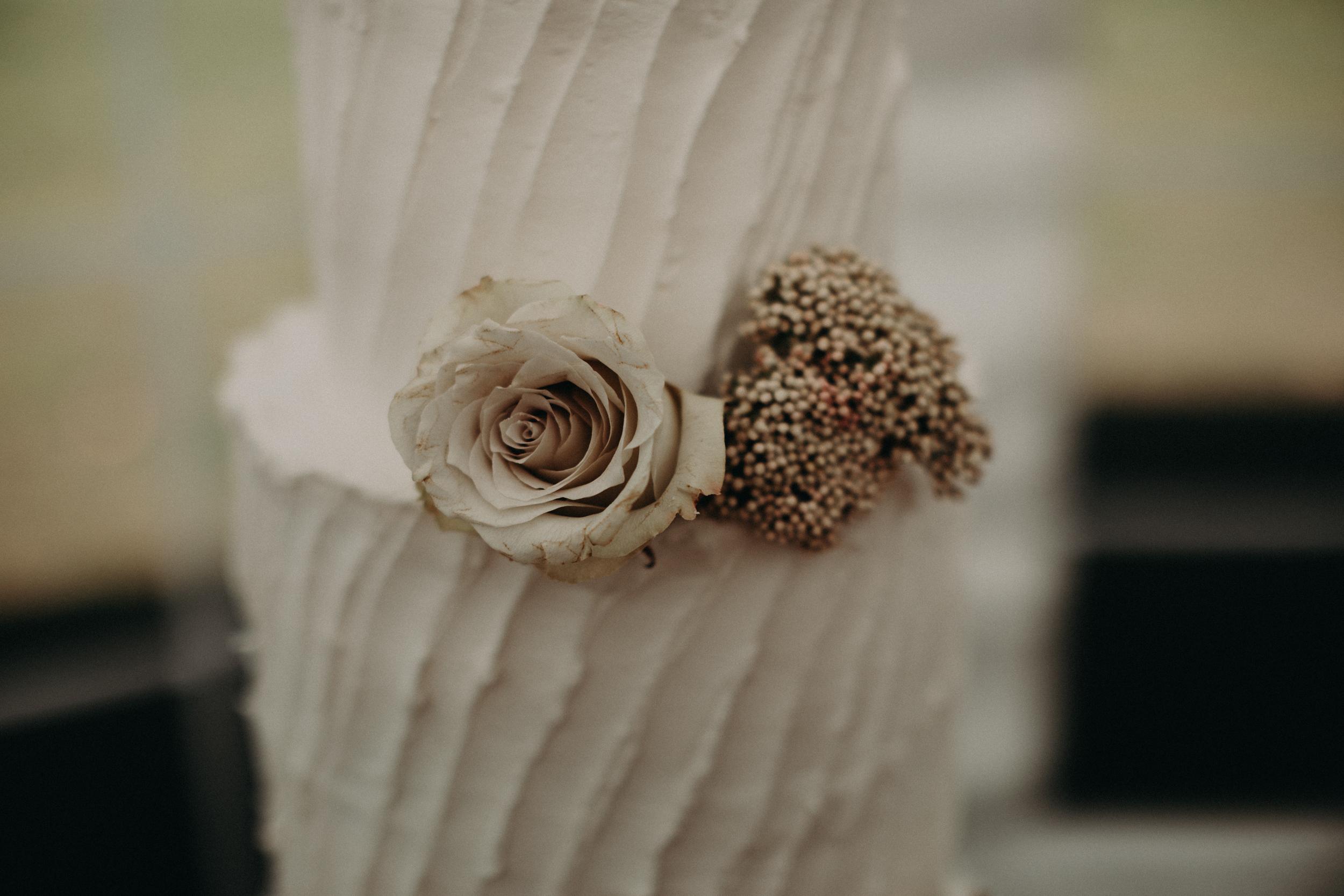 (430) Alyson + Ray (Wedding).jpg