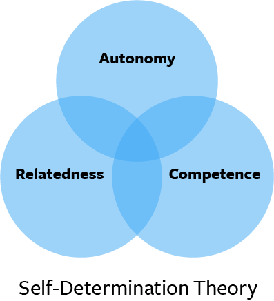 We considered different theories of behavior change including the Transtheoretical Model, the Self-Determination Theory, and Information-Motivation-Strategy Model.
