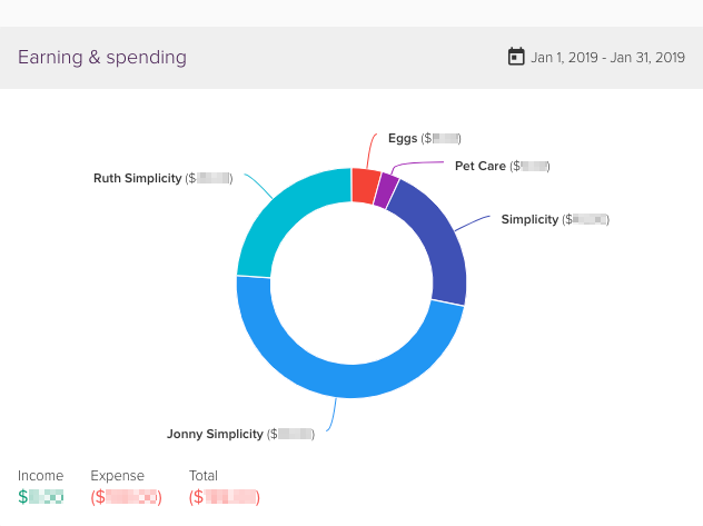 Earning and spending chart that builds up over the month.