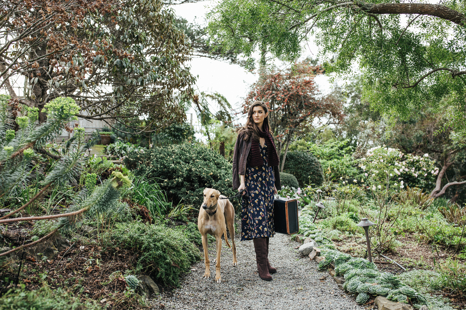 hillary jeanne photography - teryn grey, greyhound dogs, fashion blogger, garden