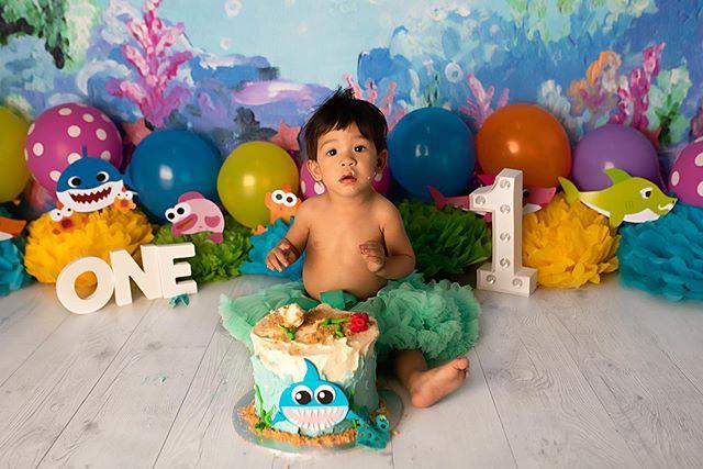 Baby Ava 😍🦈 #familyphotography #photographer #adelaidephotographer #adelaide #adelaidephotography #capture #familygoals #photoshoot #portrait #canon #familyportraits #maternityphotographer #newbornphotography #newbornphotographer #cakesmash #cakesmashphotography #cakesmashsession #firstbirthday #babygirl #igportrait #portraitoftheday #smashcake #babyshark #babysharkcake #babysharkbirthday #babysharkchallenge #tagsforlikesapp #studiophotography #kidsphotographer #babyphotoshoot