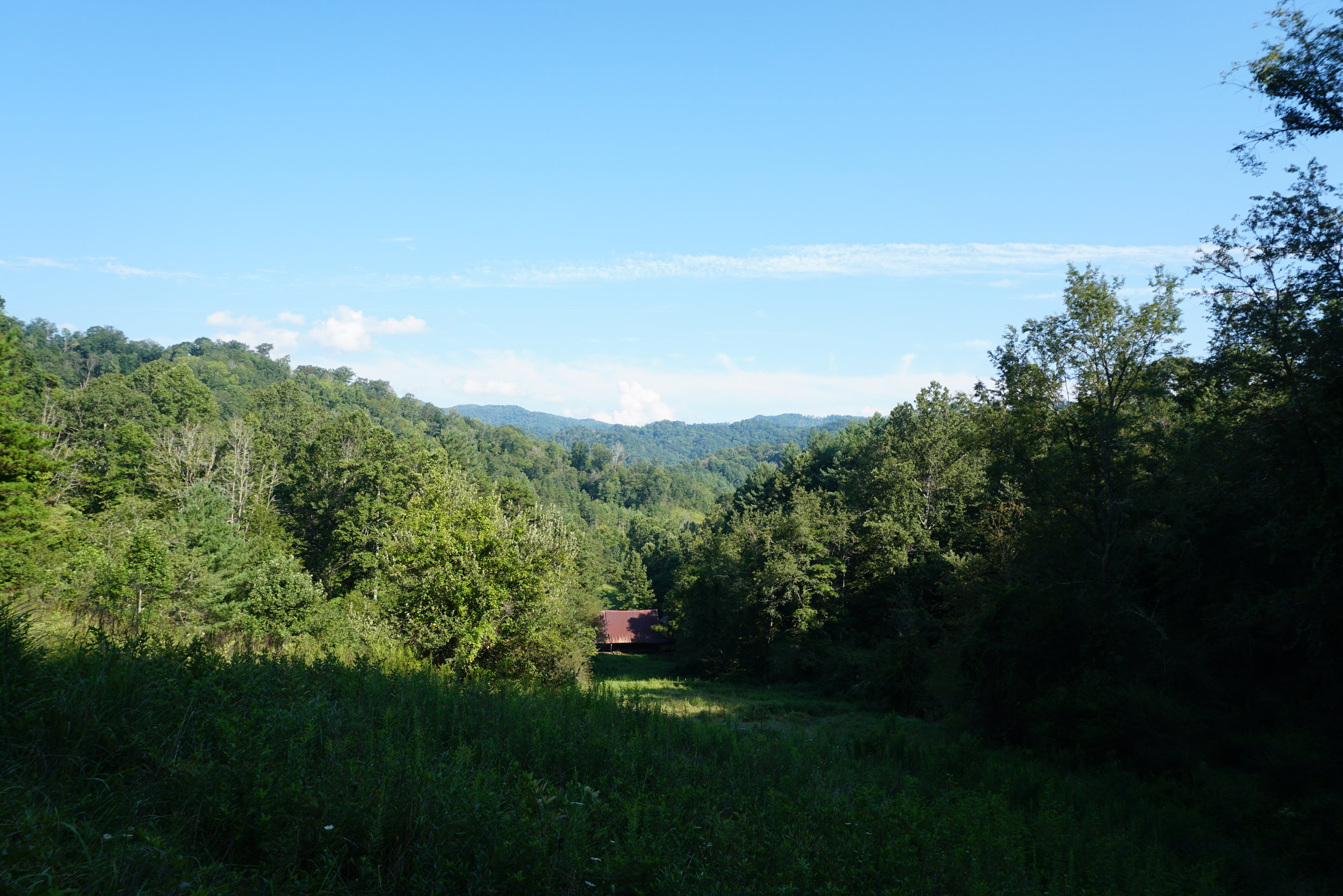 This is at the foot of the mountain, looking back towards the 3rd barn down from the house.