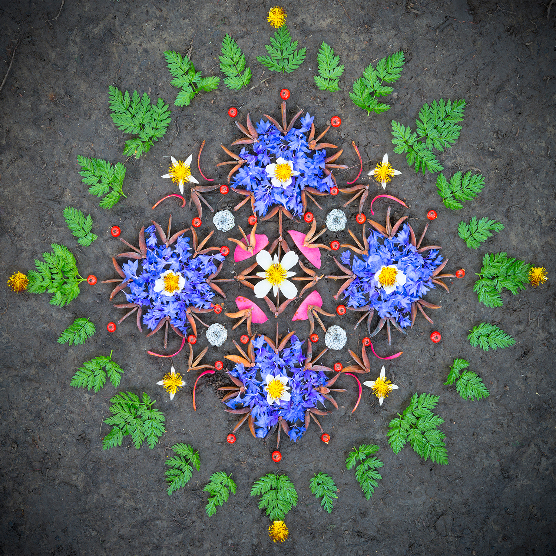 01 Divine Vibrations (cropped).jpg