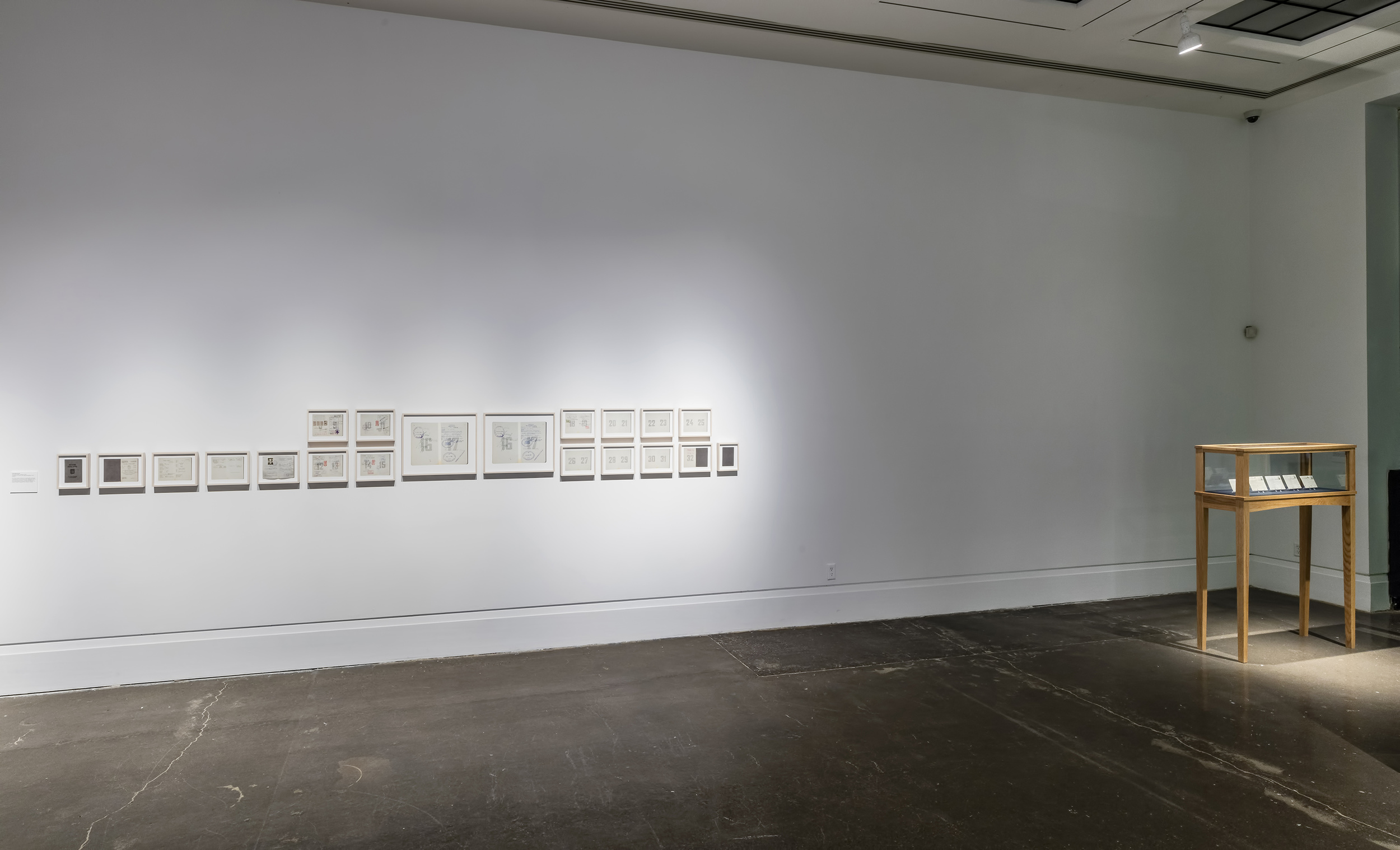 Canadian Belonging(s)   Art Gallery of Mississauga   May 5 - July 3, 2016