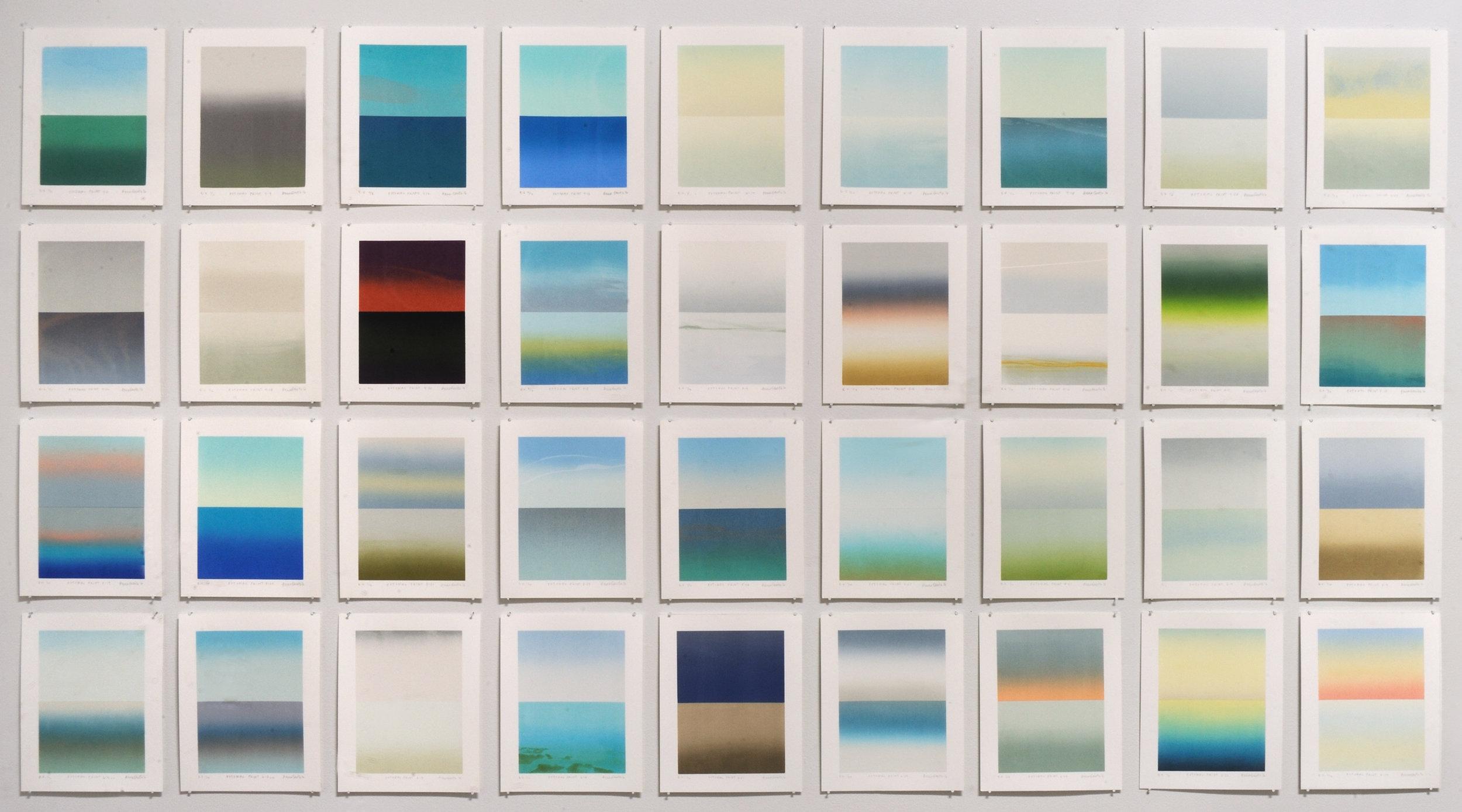Potomac Prints , 2016, silkscreen, 44 x 80 in. (photo: Greg Staley)