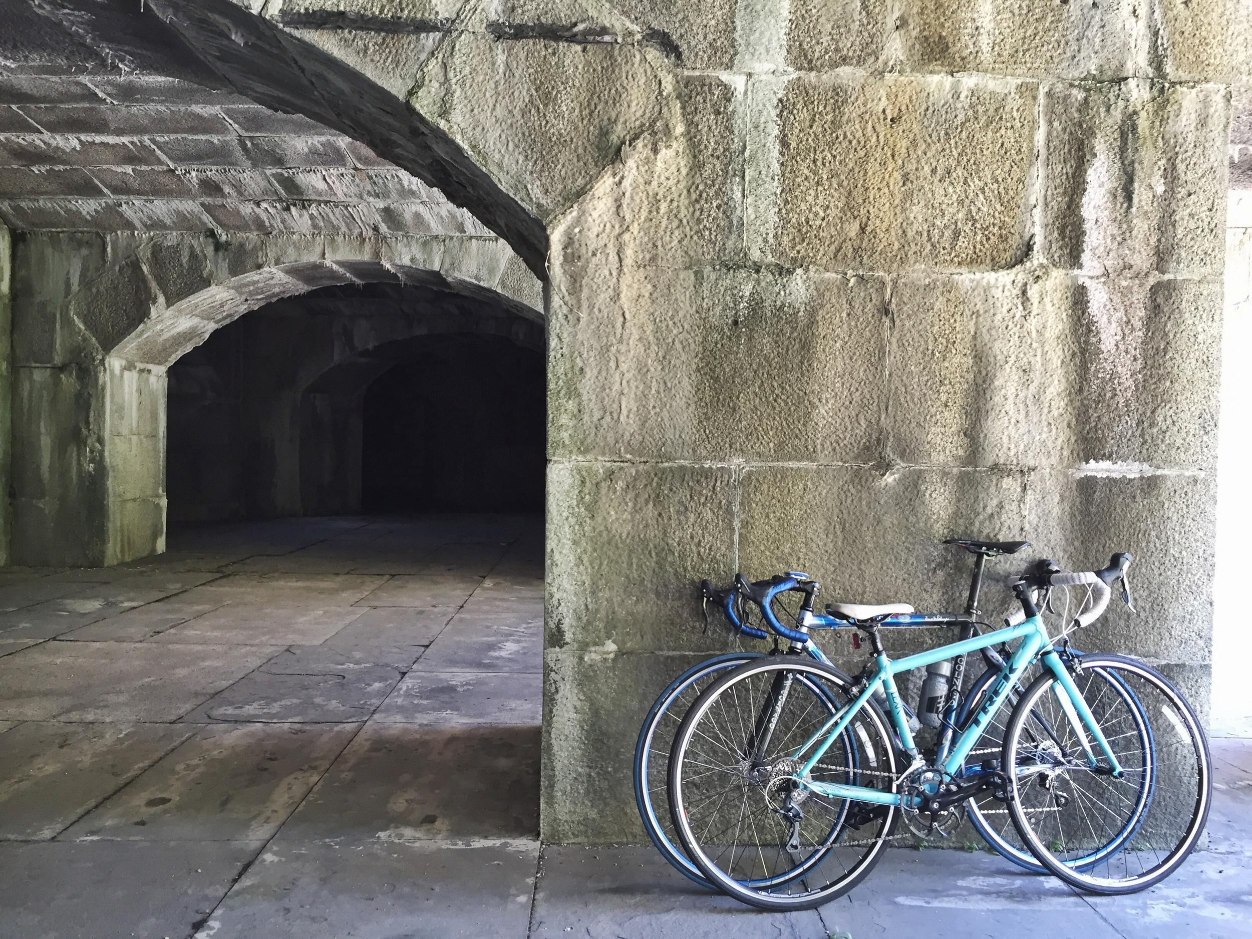 provencal-pan-bagnat-fort-totten-bikes