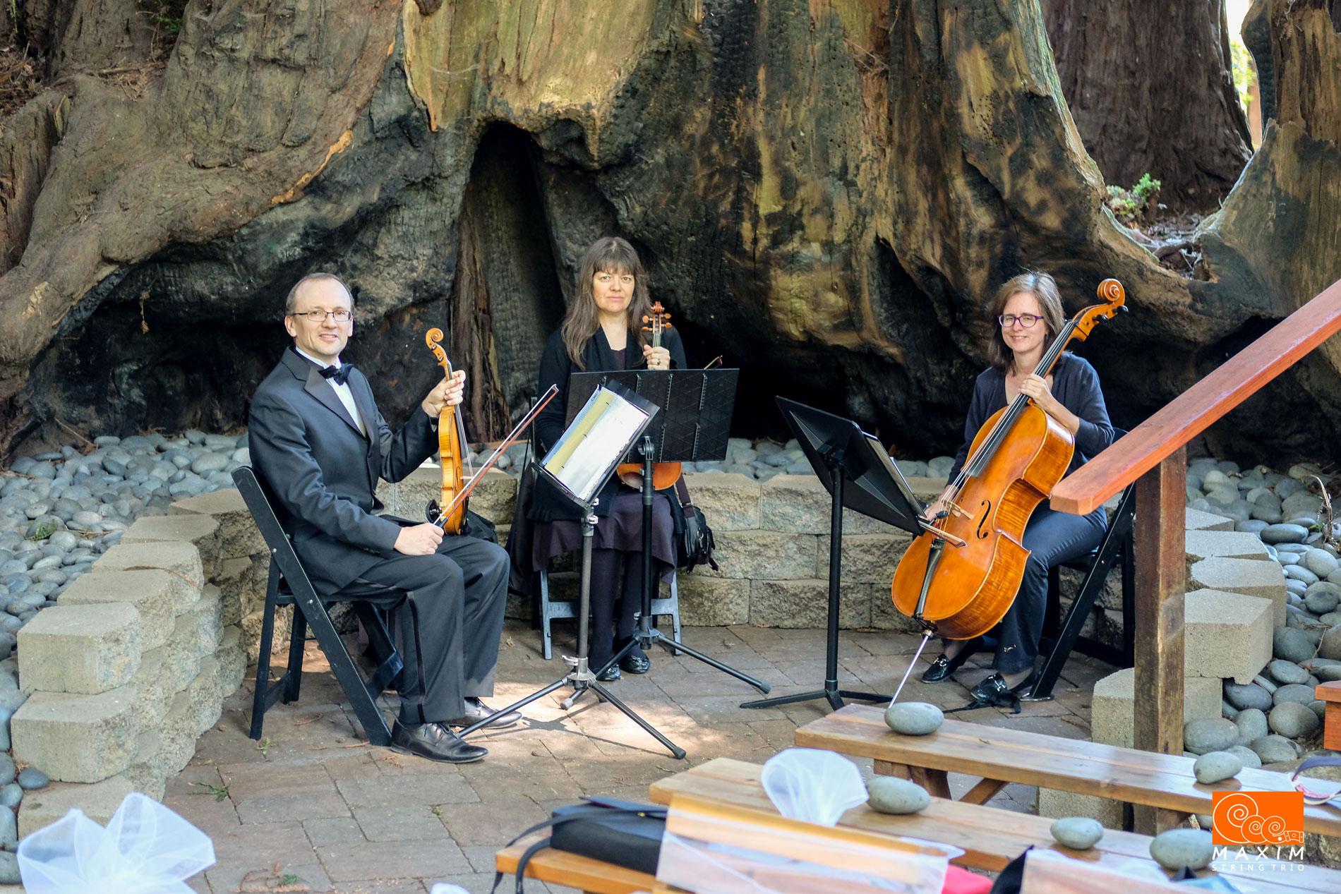 Trio Maxim at Felton Guild