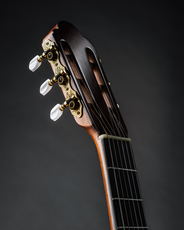 guitarhead.jpg