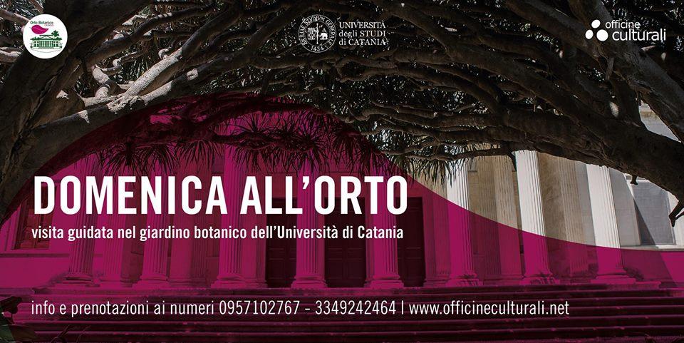 domenica all'orto.orto botanico di Catania.domenica al museo