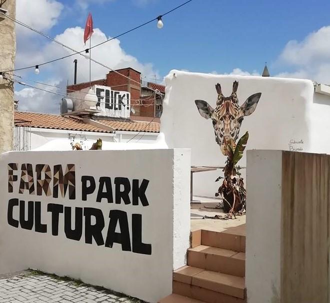 cammunity farm fest.jpg