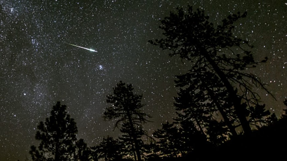 aspettando le stelle cadenti.jpg