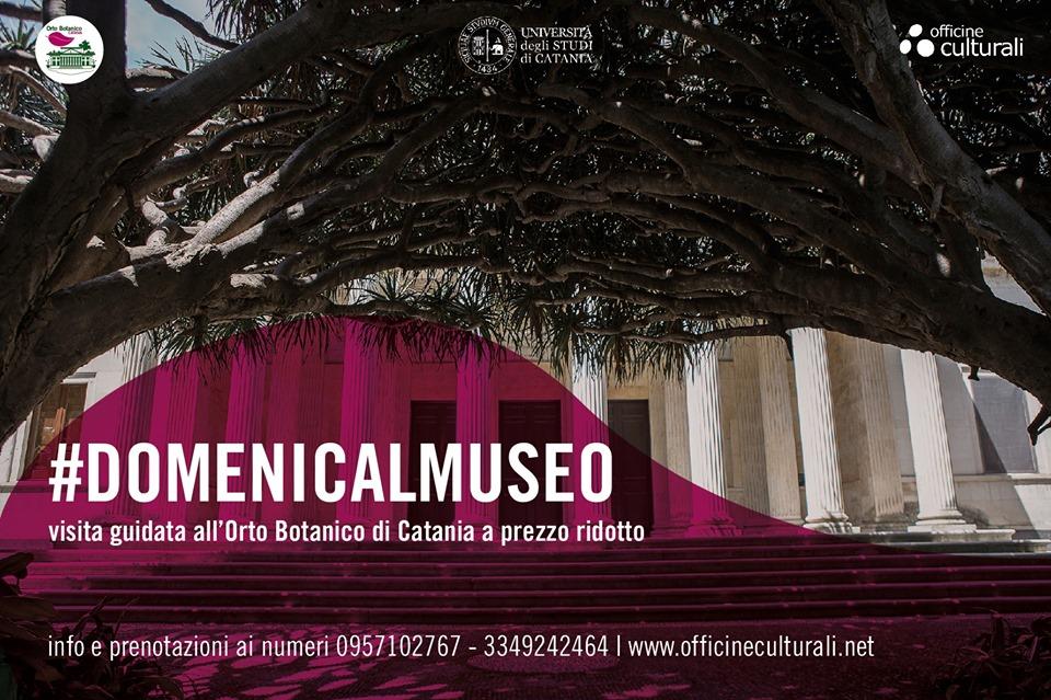 domenica al museo orto botanico catania.jpg