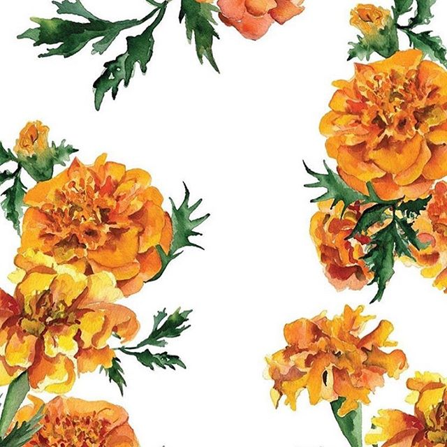 The marigold flower is a true reflection of the month of October with layers of burnt orange petals matching the falling leaves that surround it 🍂🍁 The October correspondence card from the Birth flower collection