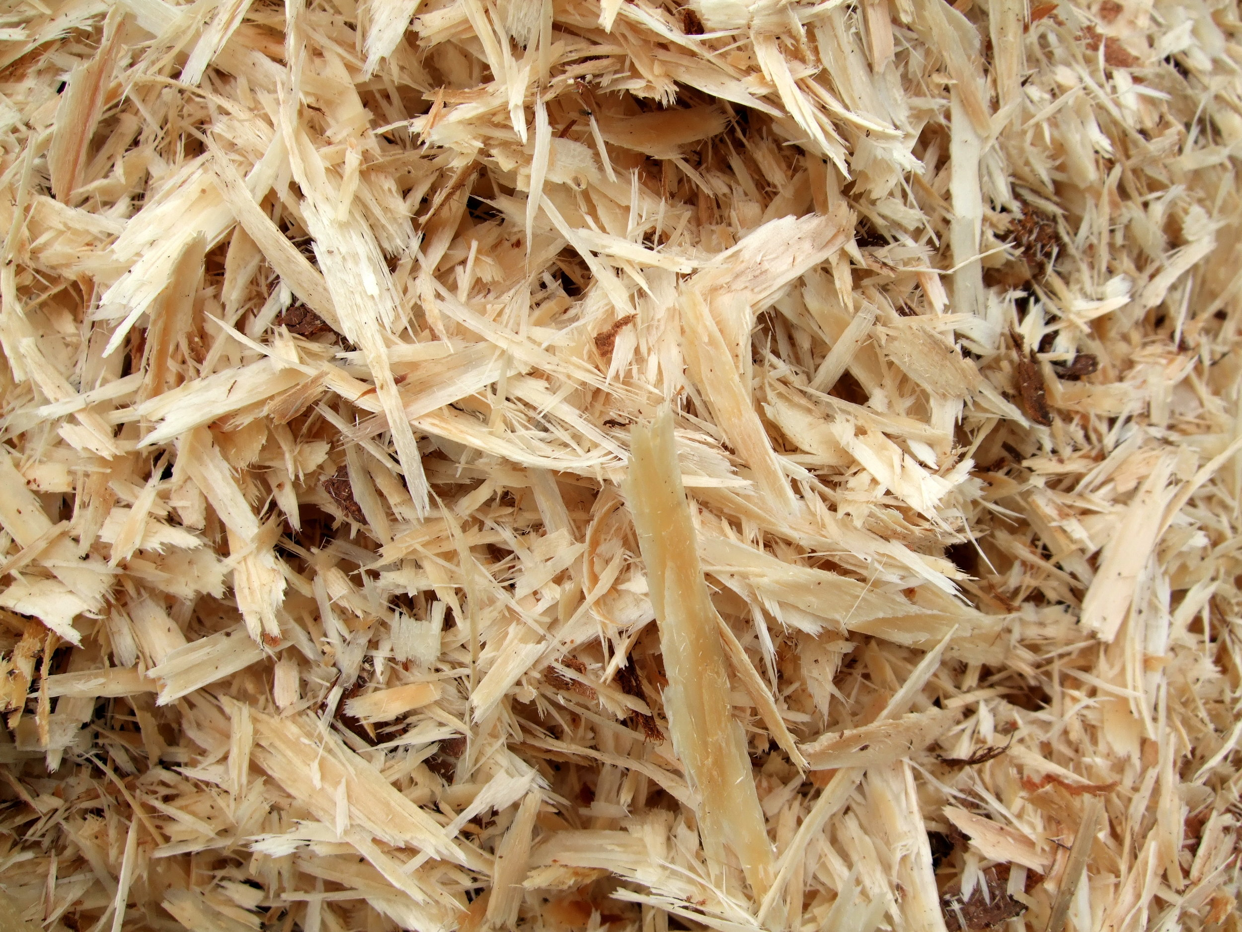 Viscose is one type of fabric that is made from cellulose extracted from wood chips