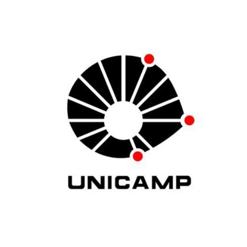 unicamp.png