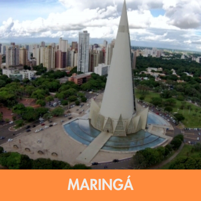 MARINGA 2.png